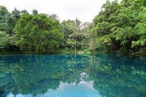 wisata taman konservasi alam di cirebon
