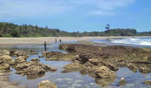 pantai parang dowo