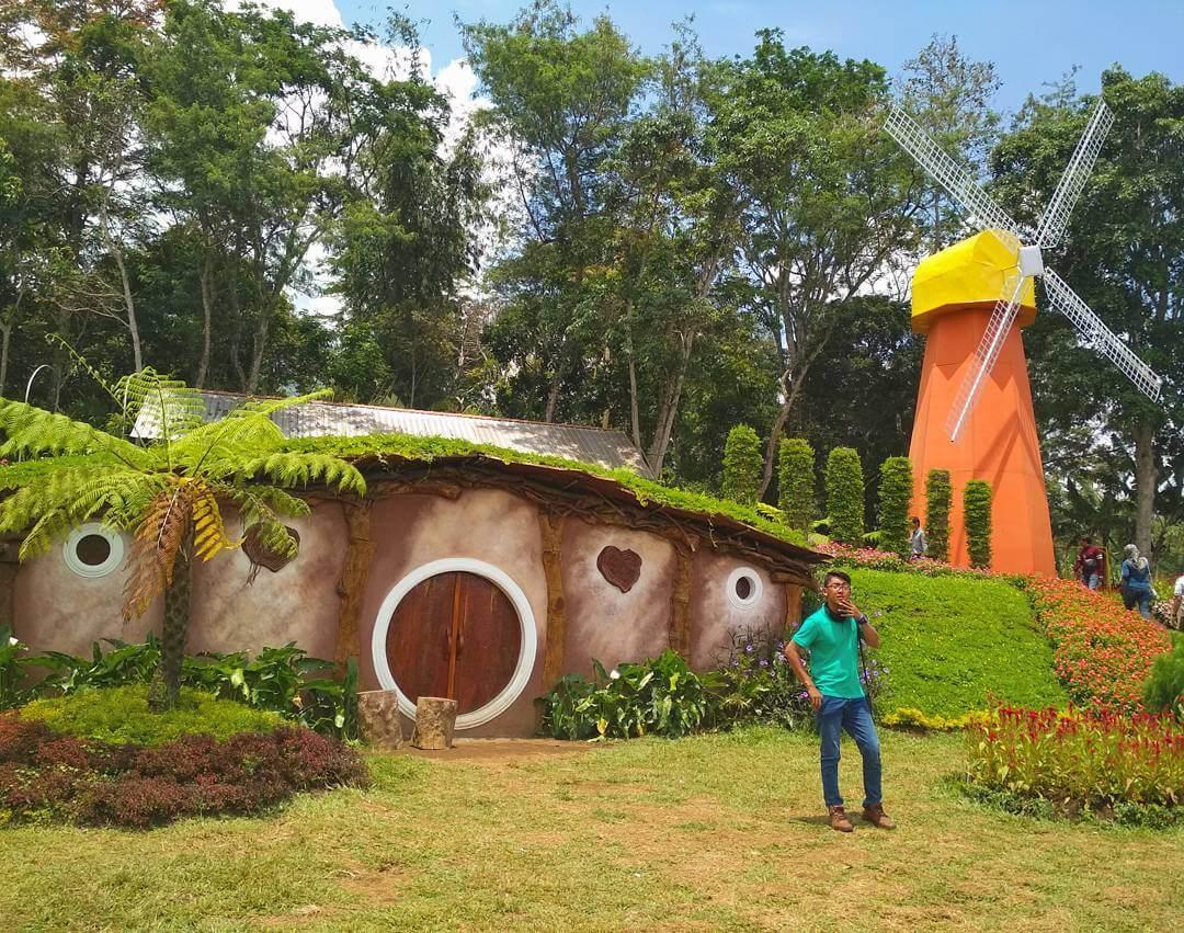 rumah hobbit di taman bunga celosia