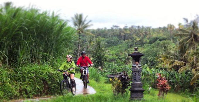 tegalalang cycling ubud
