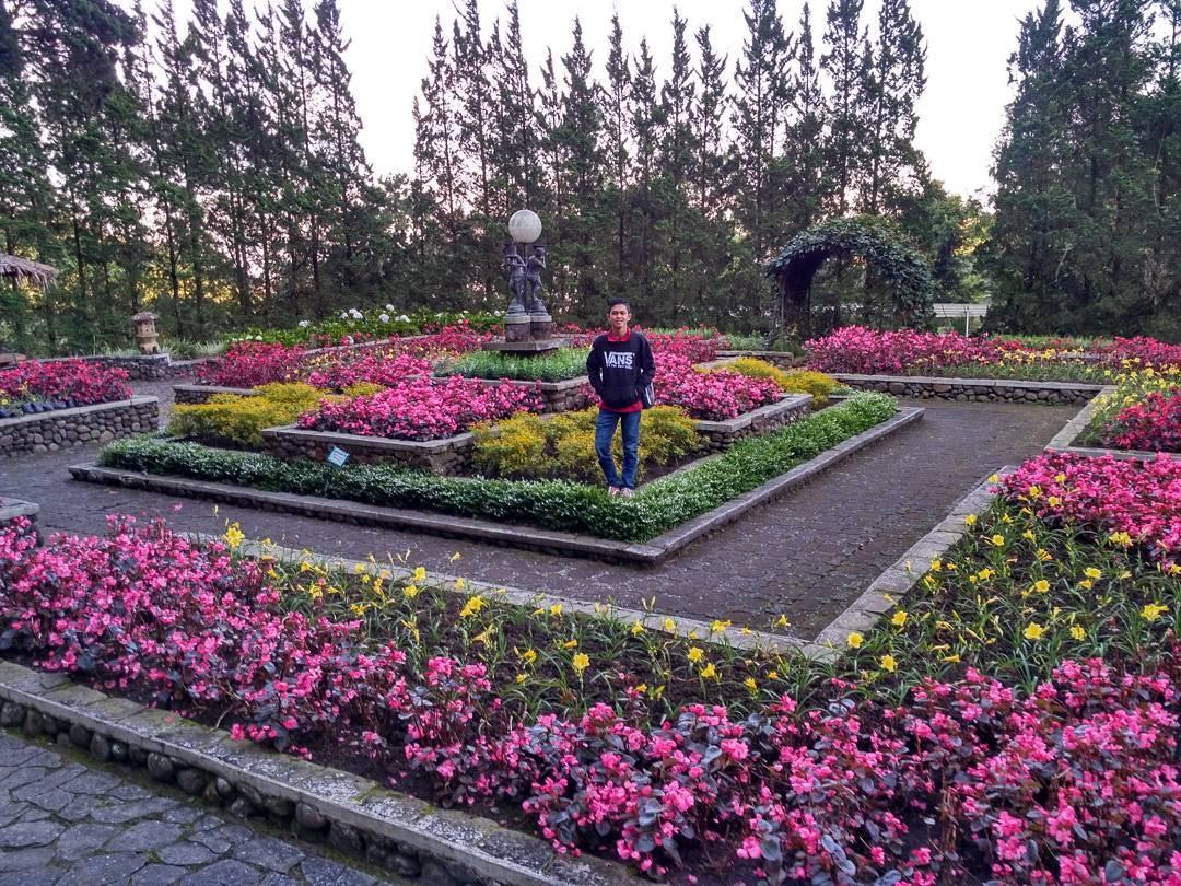 spot foto di melrimba garden