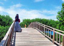 hutan mangrove pandansari