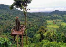 rumah pohon gangga