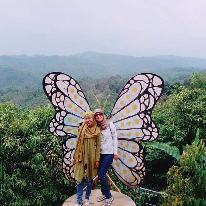 spot sayap kupu-kupu di jonggol garden