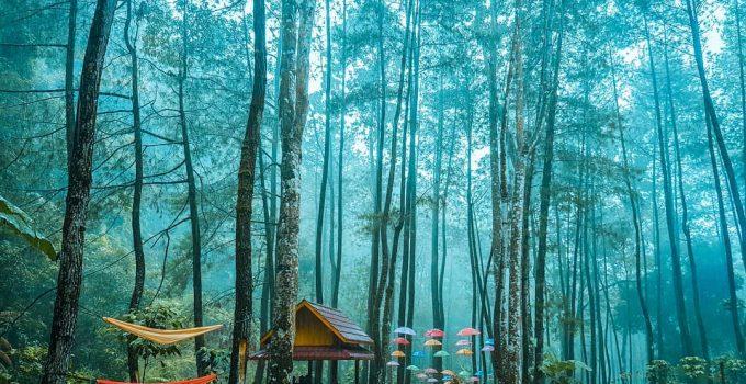 srambang park