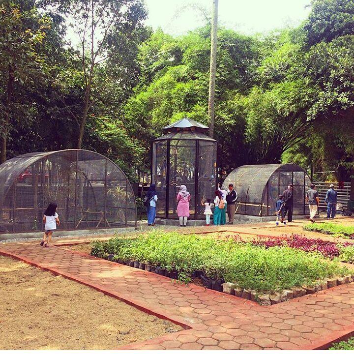 taman hewan di taman badak bandung