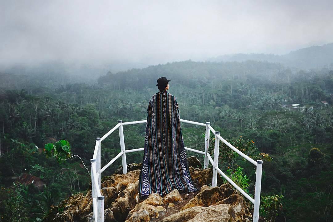 Image result for Hutan Pinus Kalilo, Purworejo