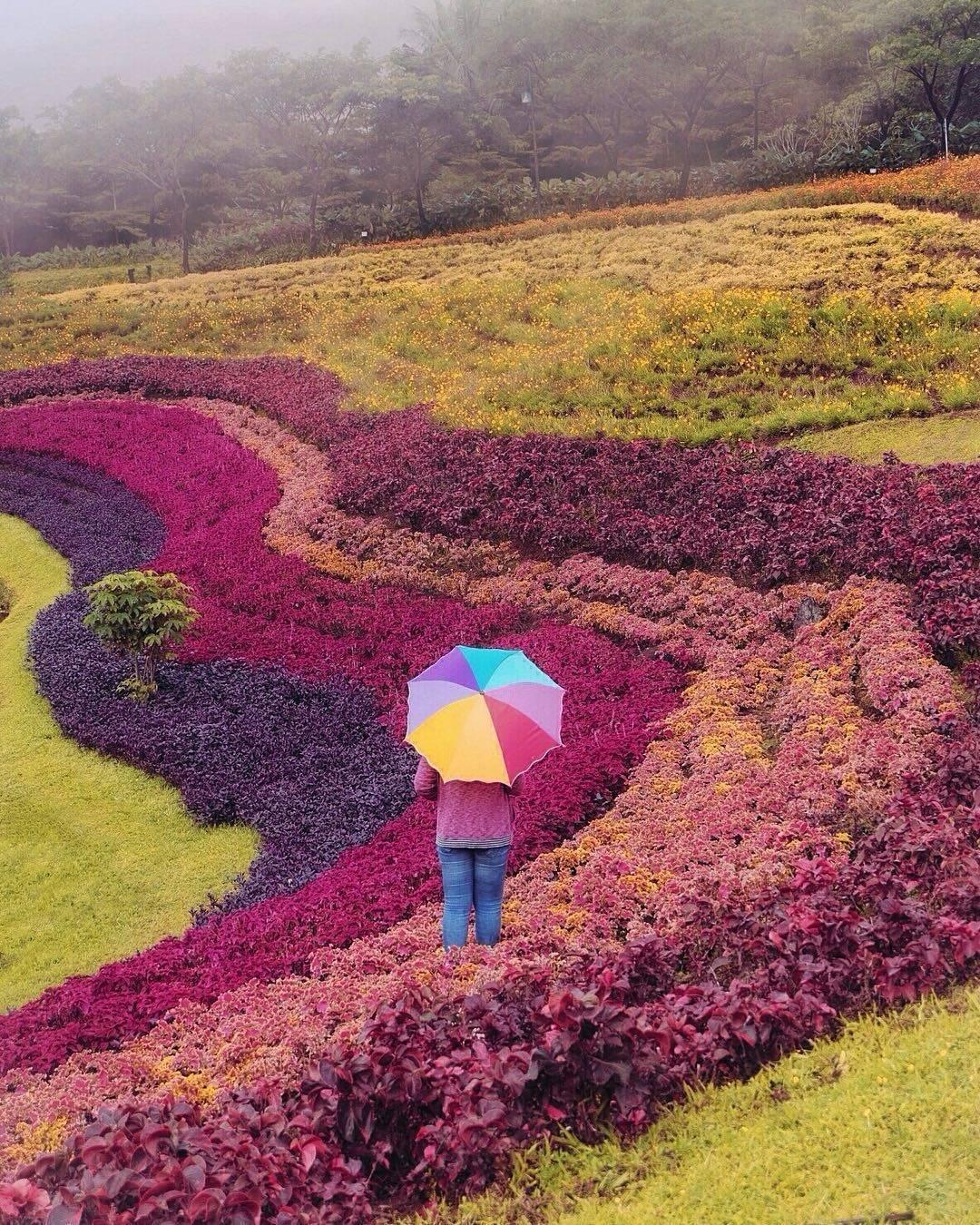 taman warna-warni vimala hills