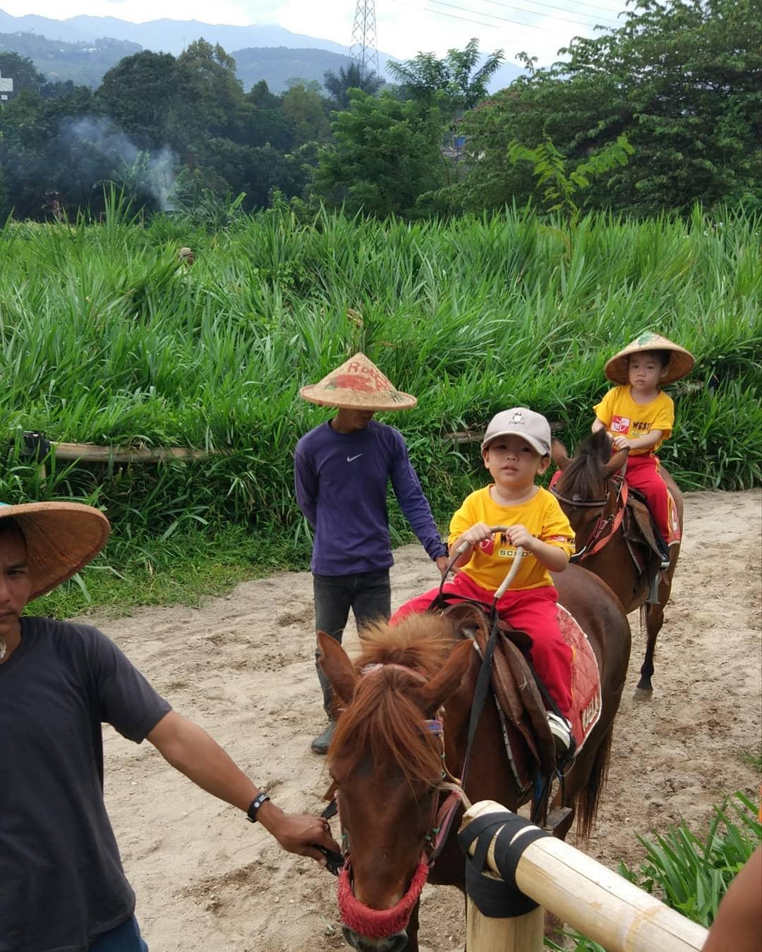 naik kuda di kuntum farm field
