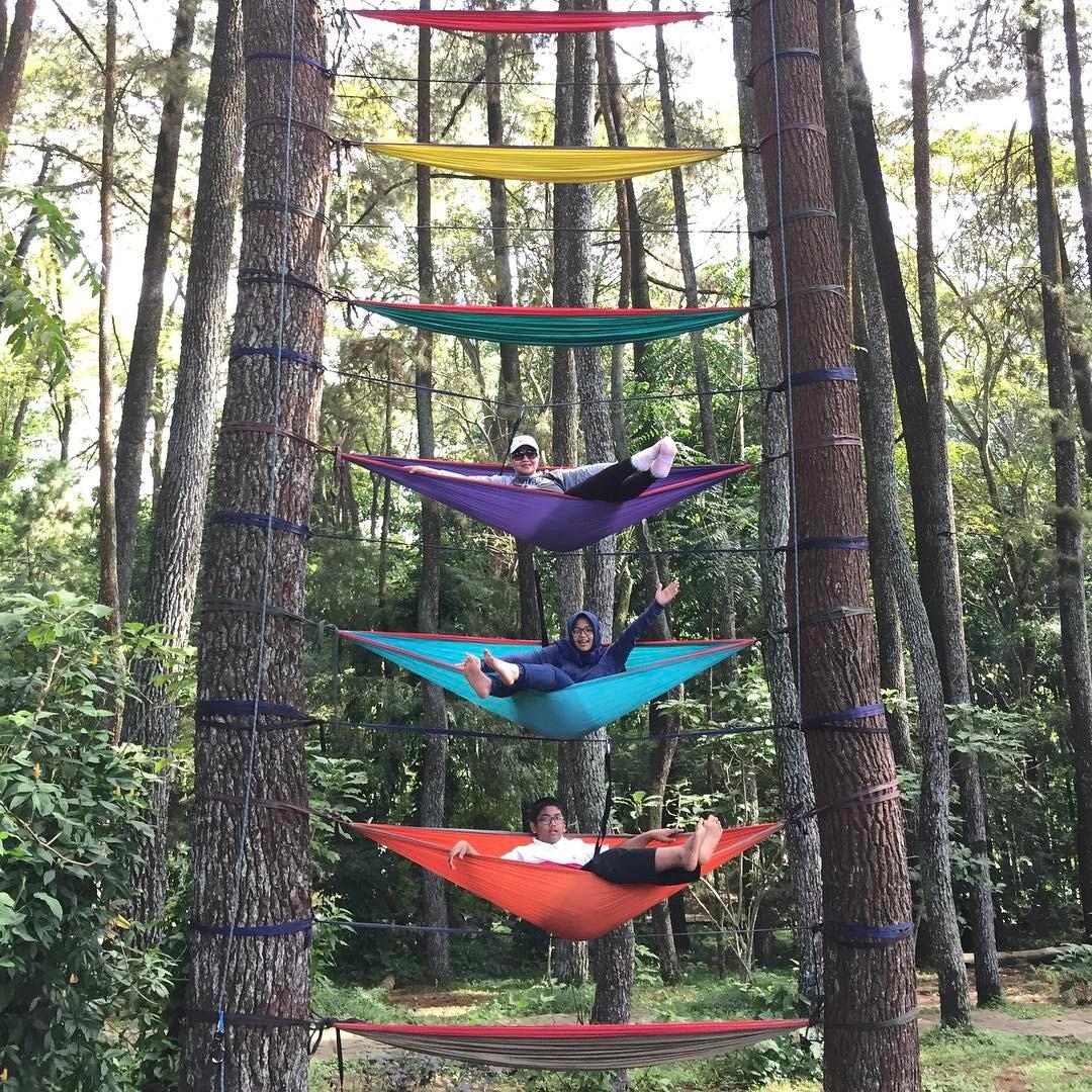 spot foto hummock di taman hutan raya bandung