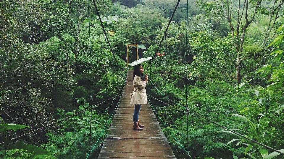 spot foto jembatan di taman hutan raya bandung