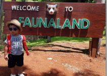 fauna land ancol