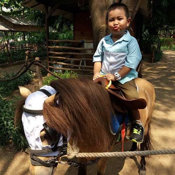 naik kuda di fauna land ancol