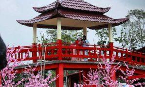 kampung korea kediri