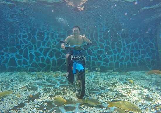 underwater woodland kuningan