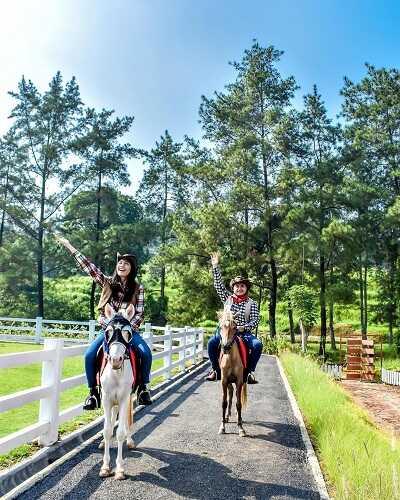 horse riding cimory dairyland puncak bogor