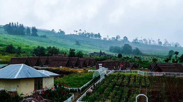 panorama kebun madu efi berastagi